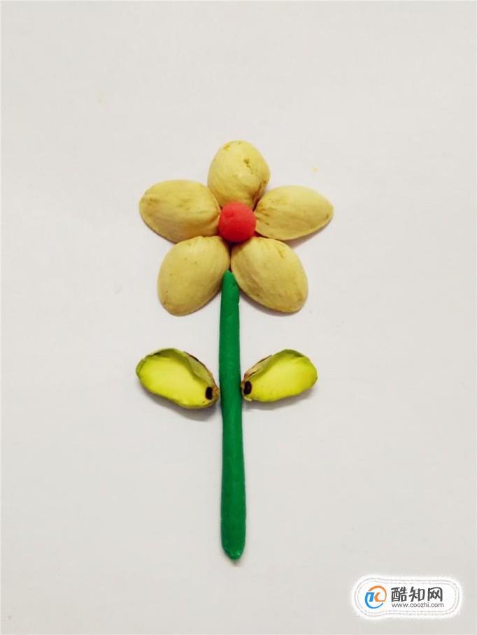 怎么用开心果壳制作漂亮的花儿