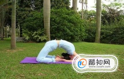教你适合初学者的瑜伽体式