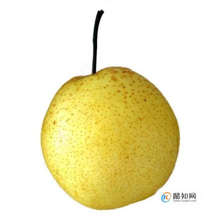 梨的功效和作用?梨具有哪些功效和作用