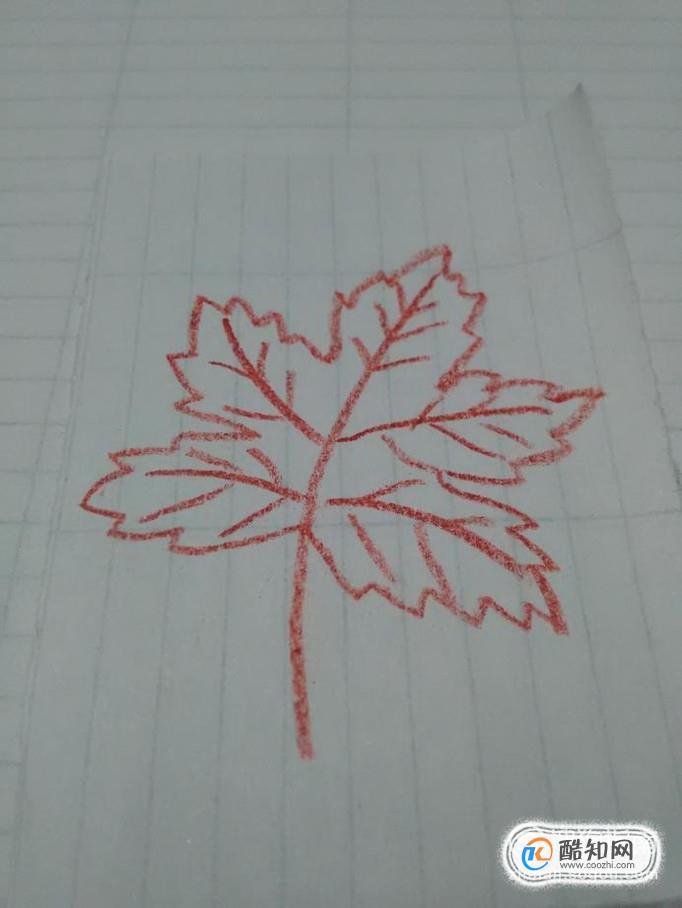 怎样简单画枫叶