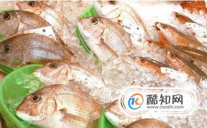 鱼的营养价值及功效