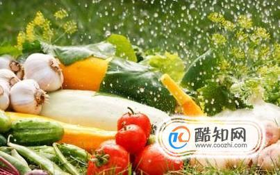 蔬菜有哪些营养