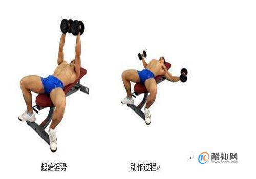 練胸肌最好的方法,七個動作練出完美胸肌