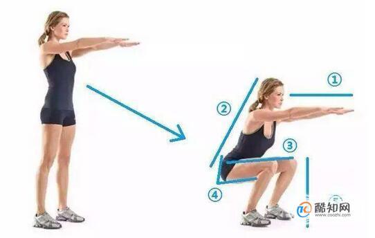 锻炼股四头肌正确方法图片,练股四头肌经典动作