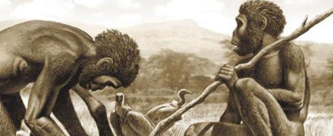 为什么?#30340;?#20154;是人类的直接祖先?