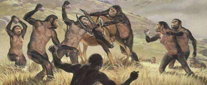 为什么说非洲是人类的发祥地?