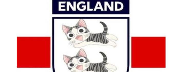 為什么英格蘭叫三喵軍團?