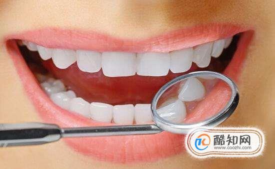牙齿的结构(图解)