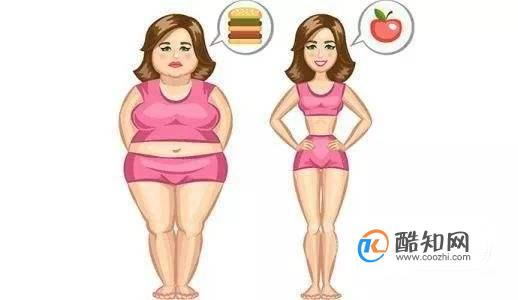 如何通过减肥食谱一周瘦10斤