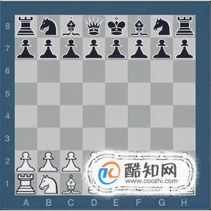 國際象棋入門教程,教你怎么玩國際象棋