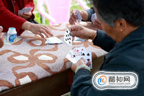 撲克爭上游基本玩法
