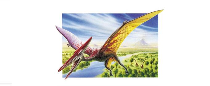 为什么翼龙能在空中飞行?
