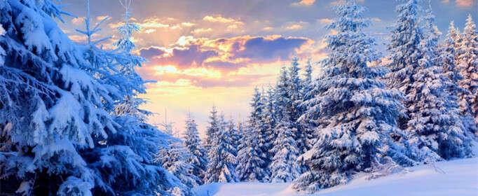 为什么干净的雪更难融化?