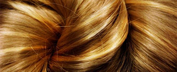 人的头发为什么不容易腐烂?