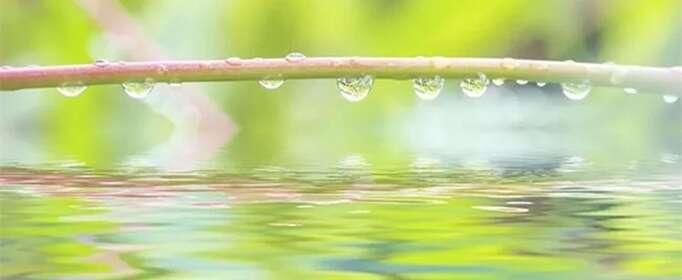 雨水节气有什么特点?