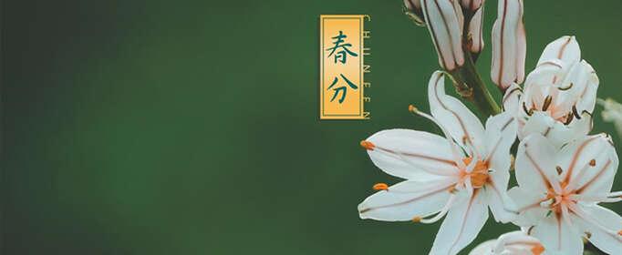 关于春分的诗句有哪些?
